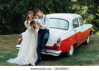 Loving newlyweds are standing, holding hands, near an old white retro car on nature in summer. Wedding portrait of a stylish, smiling groom and a cute bride.