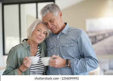 Loving portrait of modern senior couple indoors