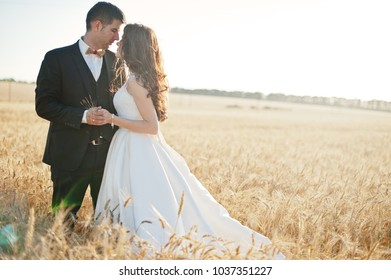 Loving wedding couple at field of wheat.