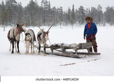 Lovozero, Russia - January 08, 2014, Sami national costume near the reindeer