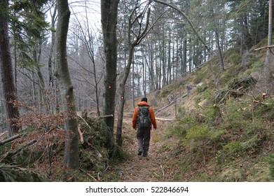 Lovrenc Path