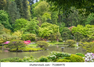 Low Aerial View of Pond and Vegetation with Japanese Wooden Gate in Background of Garden.Spring. Azaleas in Bloom.
