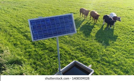 Low altitude aerial photo of single solar panel powering water pump cattle in background looking at camera photovoltaic cells absorb sunlight as a source of energy to generate electricity