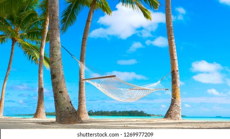 LOW ANGLE: Cinematic shot of a lonely rope hammock on the untouched sandy beach of a remote tropical island in the Pacific. Picturesque view of the lush palm trees and hammock by the turquoise ocean