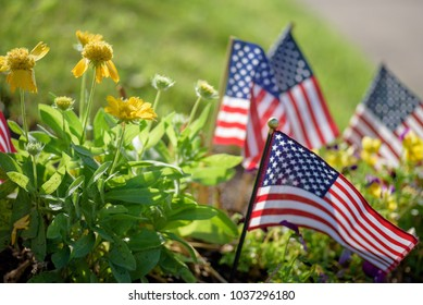 low angle closeup of American flags in garden in morning sunlight