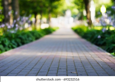 Low angle park path landscape background
