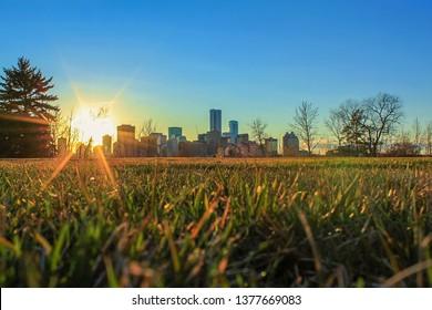 Low Angle Sunshine Scenery