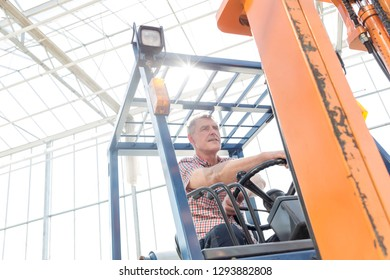 Low angle view of confident farmer sitting in forklift at greenhouse