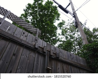 Low angle view of a gray wooden door having a custom built locking mechanism beside an electricity pole and with a tree in the background, white sky