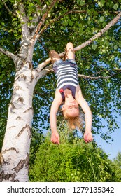 Low angle view of happy girl hanging  upside down from a birch tree looking at camera enjoying summertime