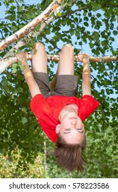 Low angle view of happy teenager boy wearing red t-shirt hanging upside down from a birch tree looking at camera smiling enjoying summertime