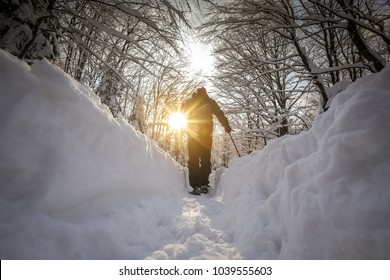 Low angle view of hiker walking on the path with fresh deep snow in the forest on the hill at sunset.
