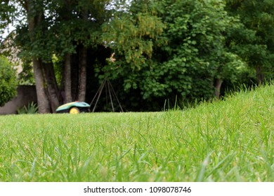 Low angle view of lawn. Robotic lawn mower on background.