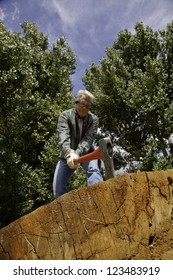 Low angle view of man chopping wood