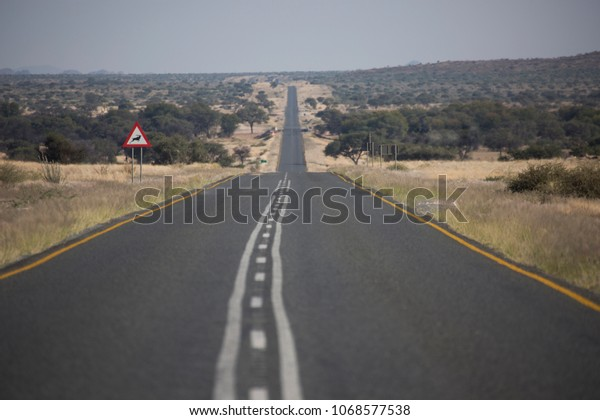 Low angle view at straight road in bush land