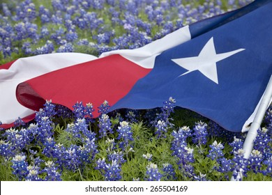 Low angle view of a Texas flag laying among bluebonnet flowers on a bright spring day in the Texas Hill Country