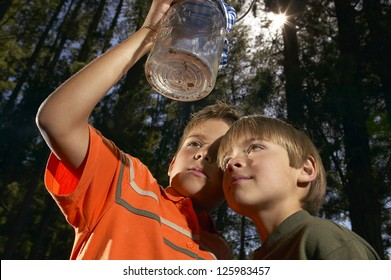 Low angle view of two young boys closely examining a glass jar with insects which they have cought in the forest behind them
