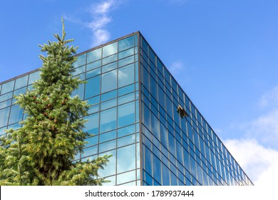 Low angle view of unrecognizable modern office building covered with glass and green pine tree. Blue sky with some white clouds in the background. Eco-friendly construction theme.