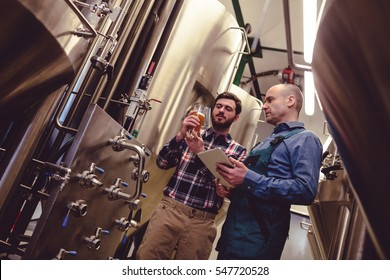 Low angle view of worker and owner discussing over beer in container at brewery