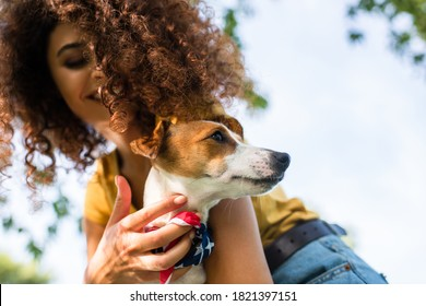 low angle view of young curly woman holding jack russell terrier dog against blue sky