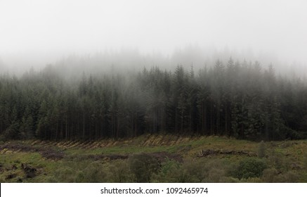 Low clouds cover mountain top. Horizontal landscape, wide perspective
