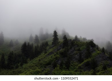 Low clouds hang over the lush green Wasatch mountains in Utah.