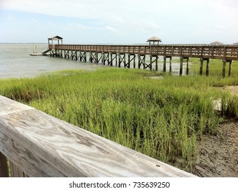 Low Country Landscape