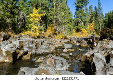 Low flow over the lava rocks in a section of the Rouge River in southern Oregon with a few golden autumn leaves