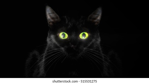 Low key cat, with green eyes