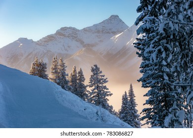 Low lying sun rays passing through the ice crystals in the air creating a serene Winter scene