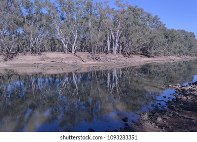 a low murrumbidgee river with a reflection of the trees on the bank on a sunny day