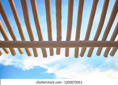 Low point of view on canopy structure made of wooden white trunks