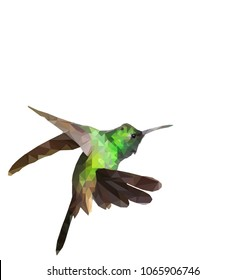 Low polygon of a green humminbird isolated on white background