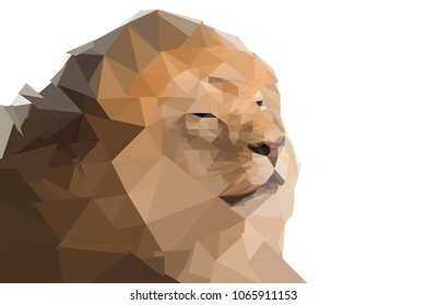 Low polygon lion portrait