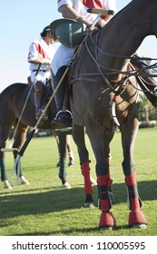Low section of polo player sitting on horse in sunny day