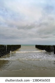 Low tide exposing rows of mussels cultivated on robes attached to poles in the bay of Wissant at Cap Gris-Nez, Pas-de-Calais Northern France