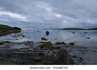 Low tide at north sea. Summer. Russia.