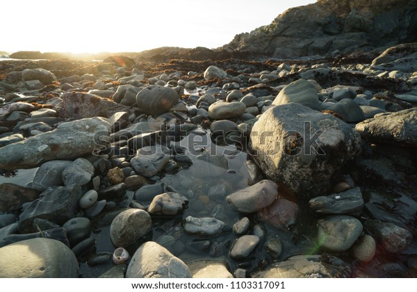 low tide tide pools exposed at sunset