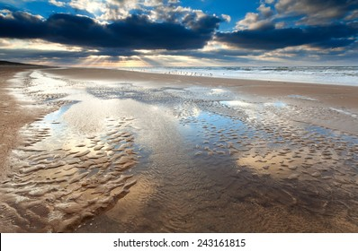 low tide at sunset on North sea, North Holland, Netherlands