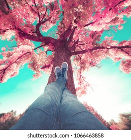 low wide angle of a person resting their feet on a tree trunk toned with a retro vintage filter