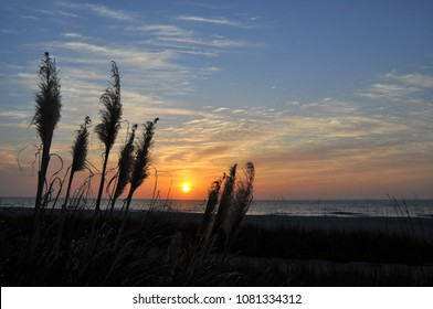 A Low-country sunrise over the Atlantic Ocean with sea oats in silhouette.