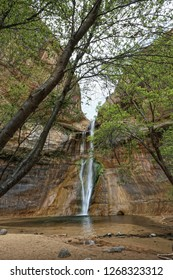 Lower Calf Creek Falls located in the beautiful Grand Staircase-Escalante National Monument area in Utah. 126-foot-high waterfall and refreshing swimming hole.