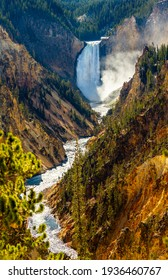 Lower Falls at Grand Canyon of the Yellowstone