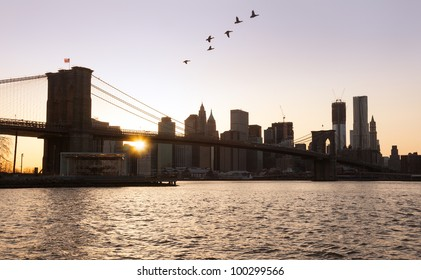 Lower Manhattan at sunset with birds flying over Brooklyn Bridge