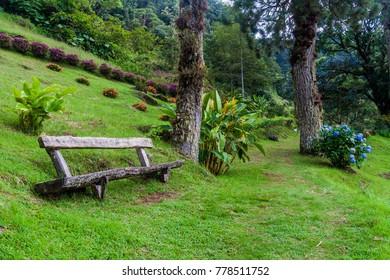 Lower part of Lost Waterfalls hiking trail near Boquete, Panama