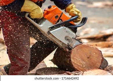 lower part of man cutting a log with chainsaw