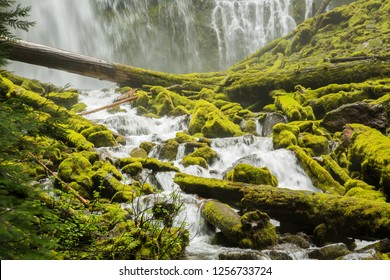Lower Proxie falls on the McKenzie River in the Willamette National forest east of Eugene, Oregon