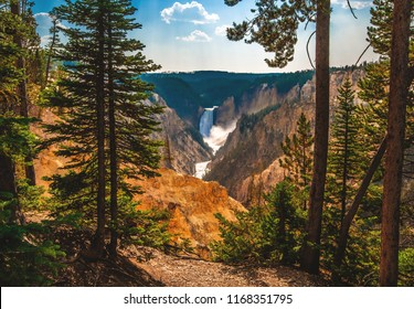 Lower Yellowstone Falls in the distance pour into the Grand Canyon of the Yellowstone in Yellowstone National Park, Wyoming, USA.