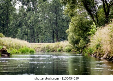 lowland river in Poland