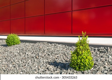 Low-maintenance garden design; Decorative gravel bed with small box trees in front of red wall